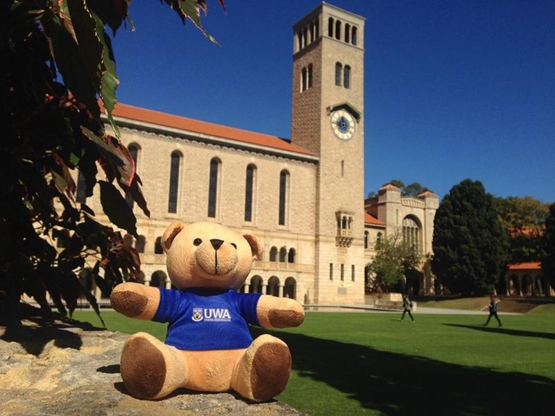 澳洲留學-西澳大學 商業資訊與物流管理碩士