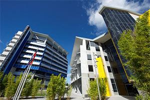 澳洲會計碩士系列-南十字星大學 Master of Professional Accounting