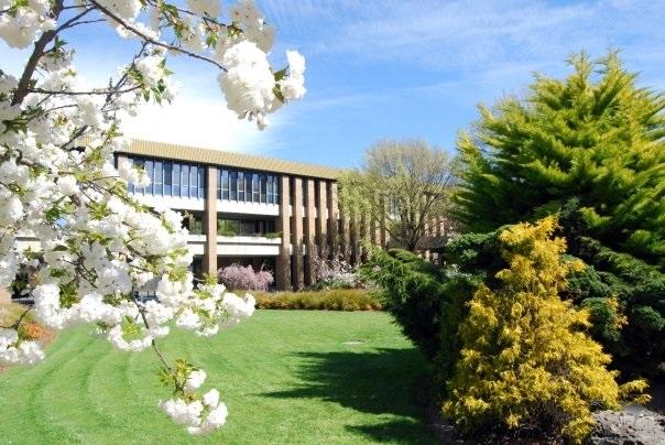 轉職讀澳洲會計碩士系列之四—La Trobe University 拉籌伯大學