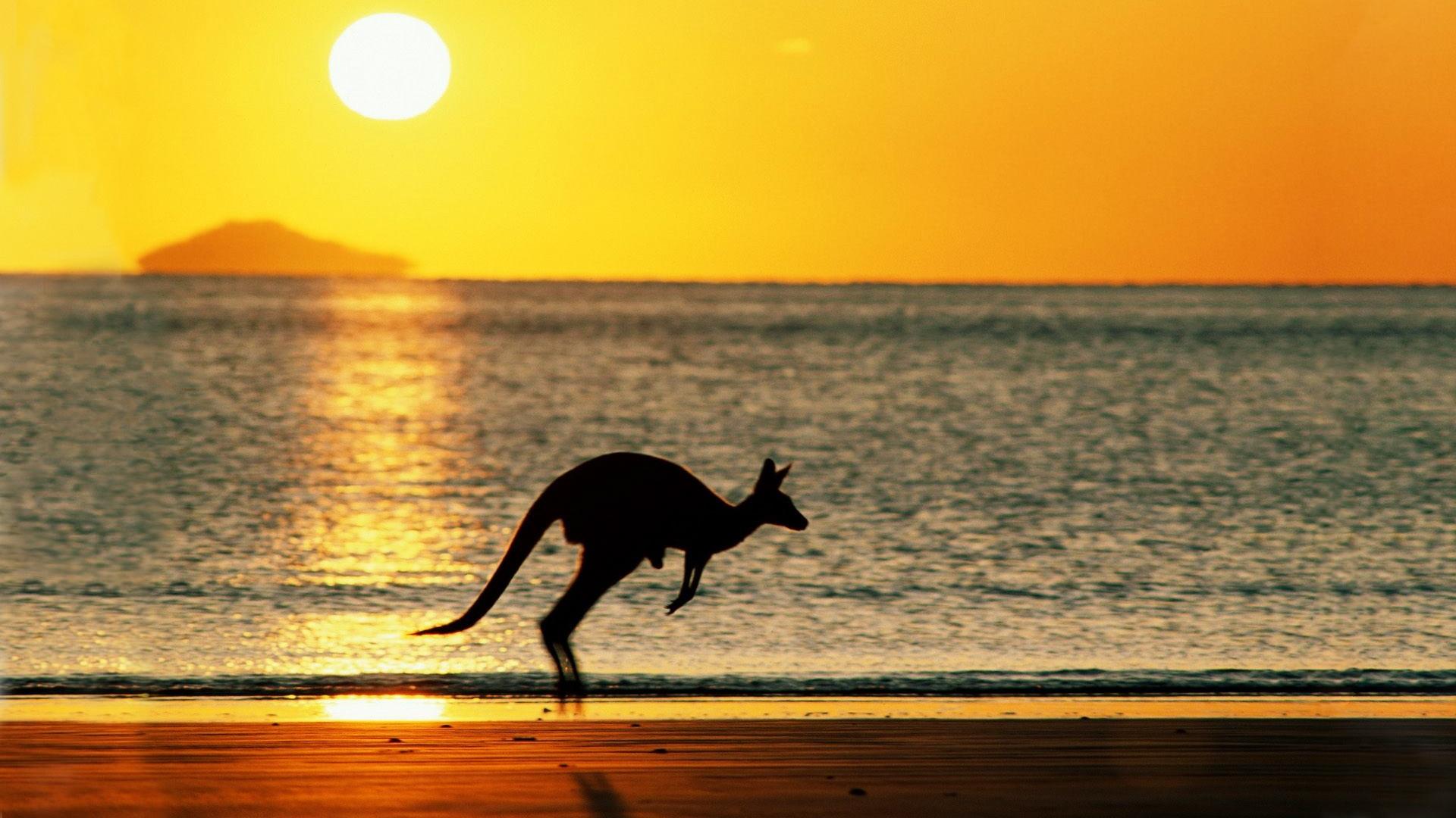 澳洲遊學 讀語言學校該準備什麼?