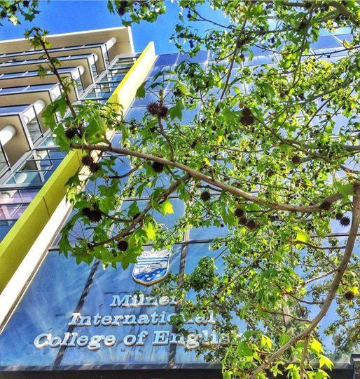 伯斯語言學校方案精選—Milner International College of English 米勒國際英語學院