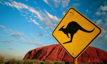 【澳洲打工渡假-交通篇】入境卡填寫教學大公開