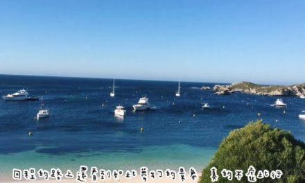 澳洲遊學 Go! Rottnest Island