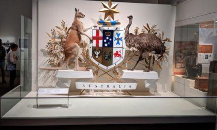 澳洲遊學趣  墨爾本大學 Melbourne Museum