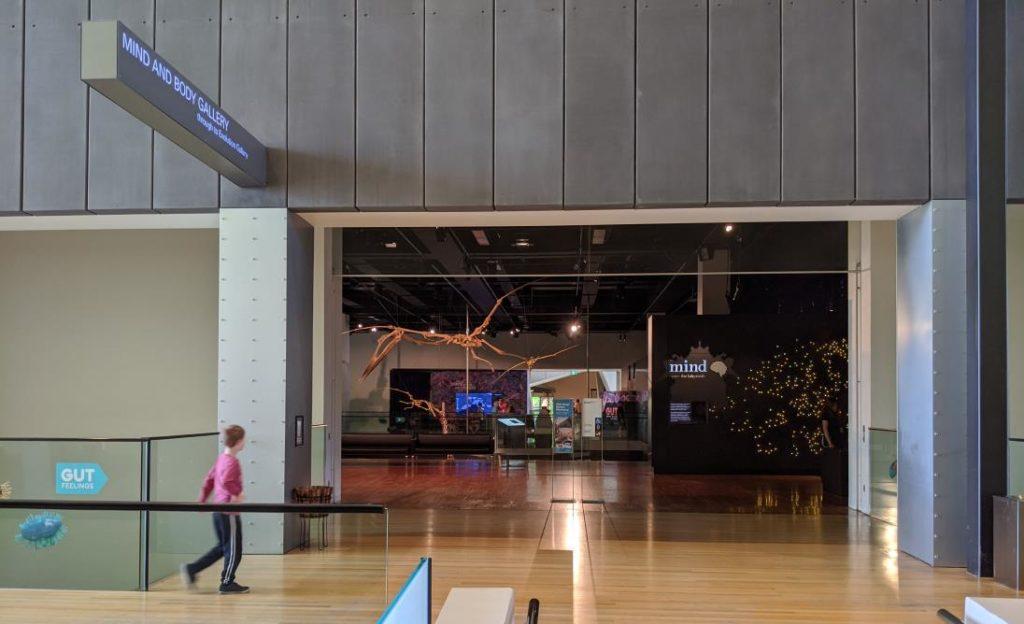 澳洲遊學 墨爾本大學附設語文中心 Melbourne Museum8